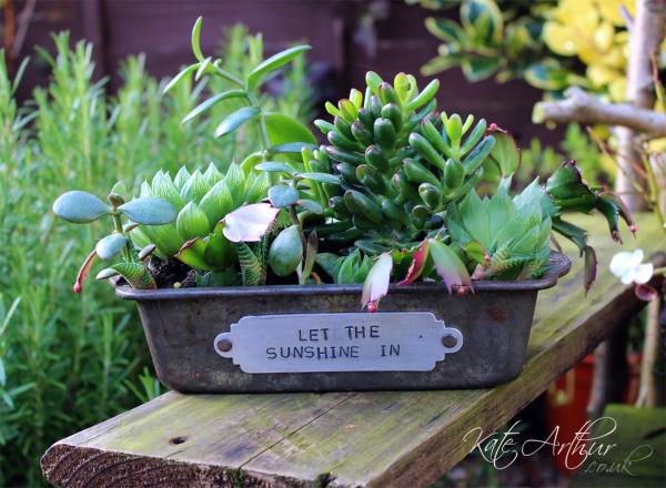 Loaf Tin Plant Pot 02