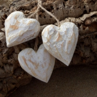 Wooden Hearts  2010