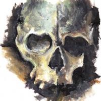 Skull 2008